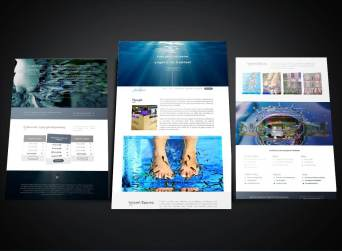FISH SPA Company Website development